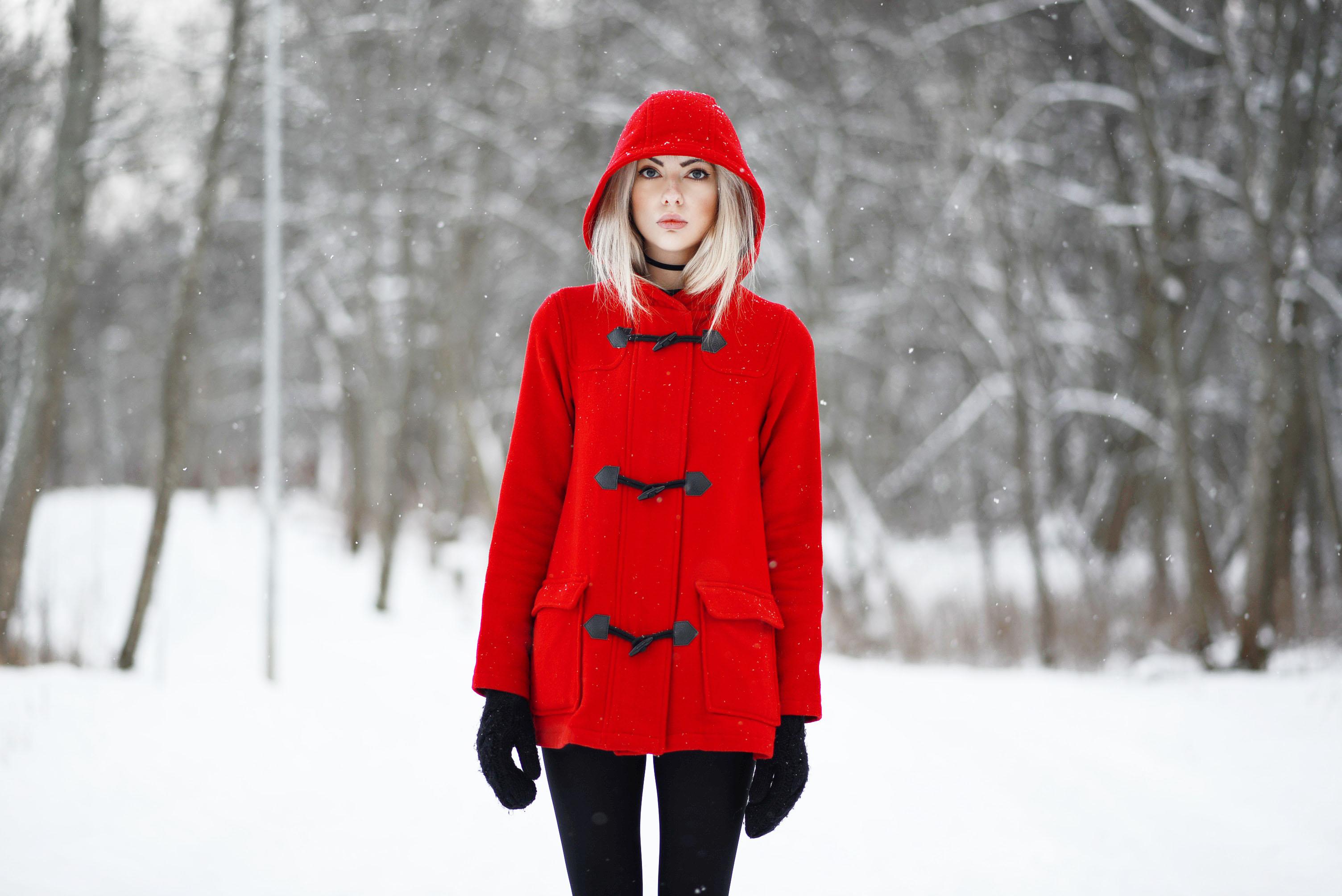 rödl4