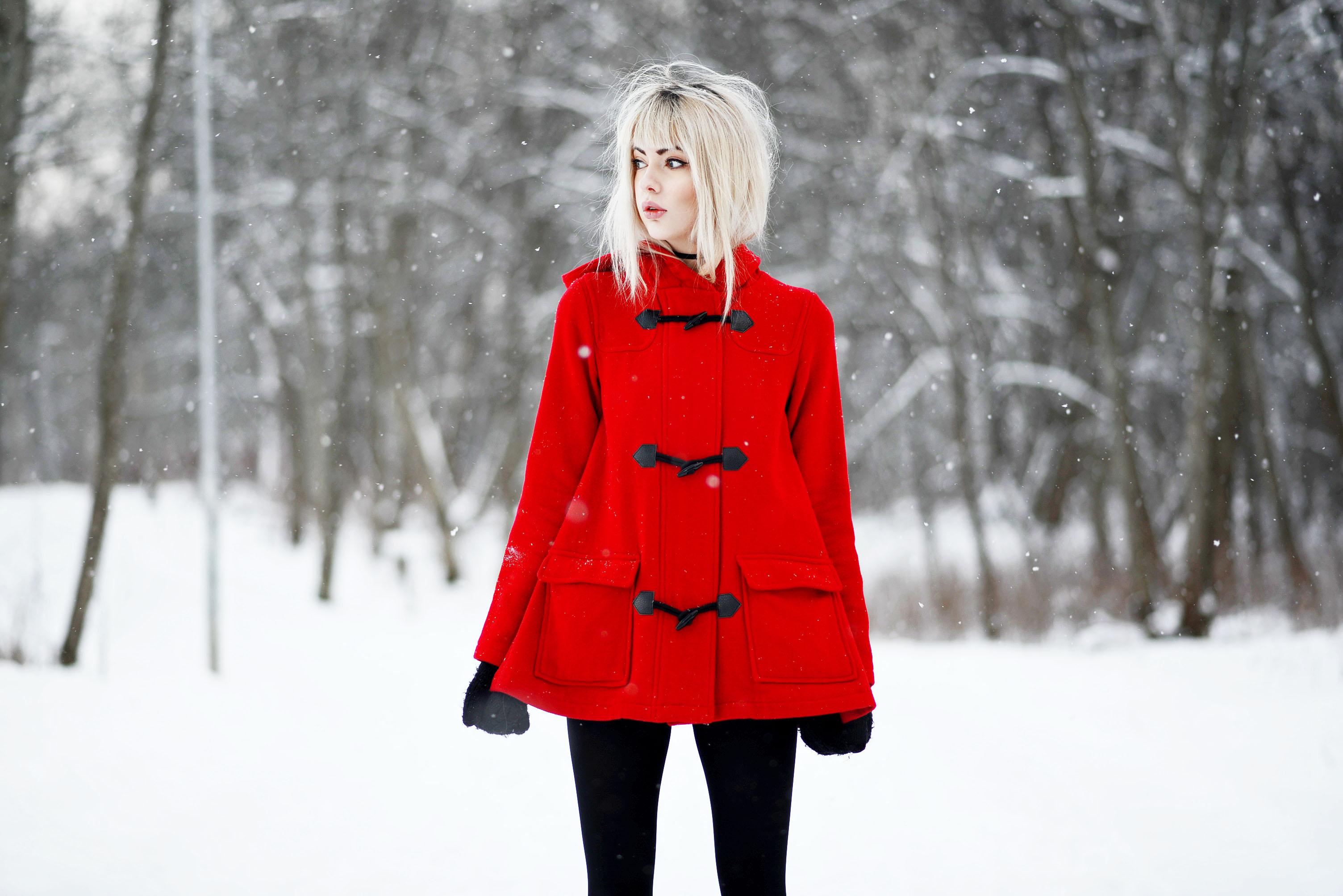 rödl5