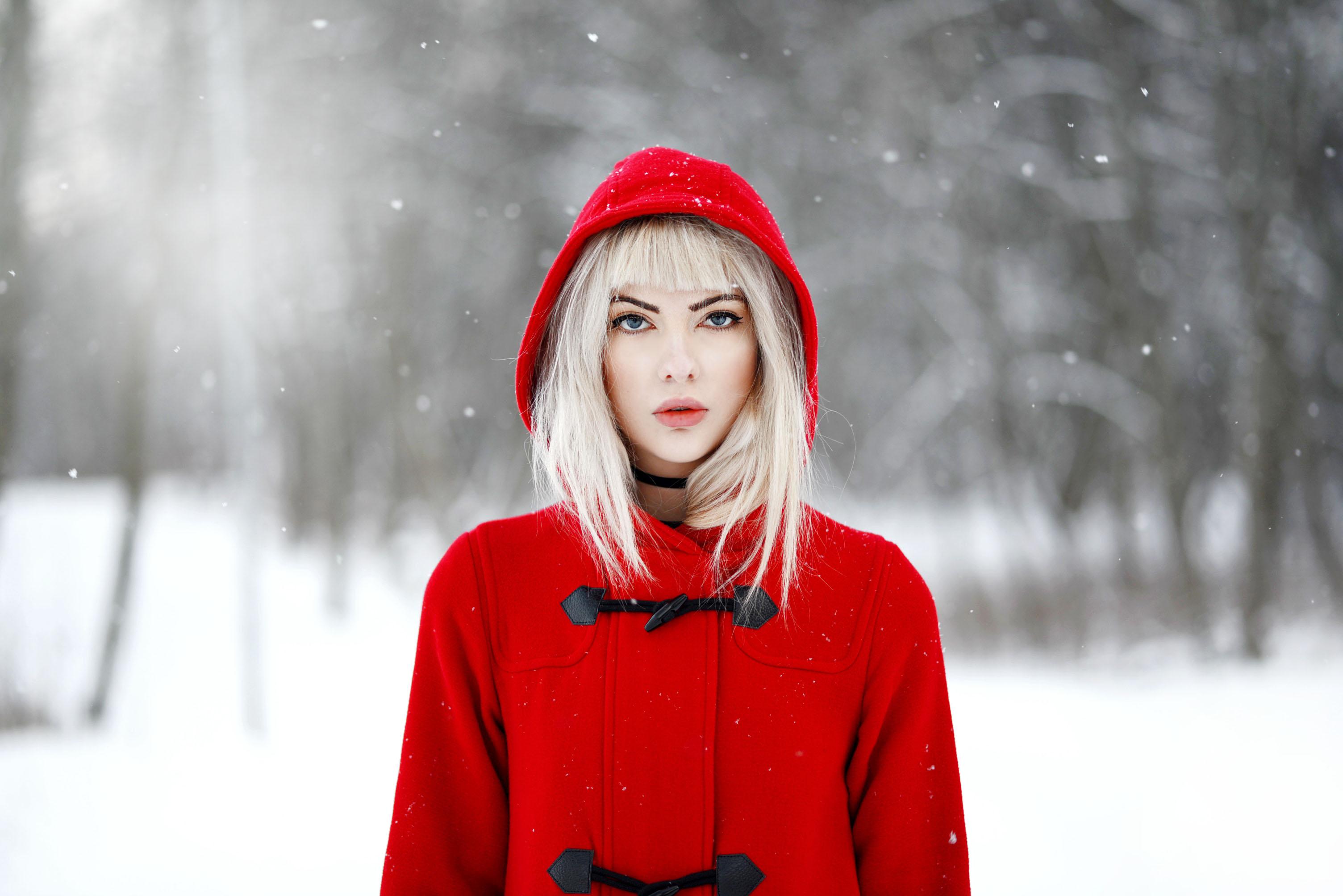 rödl6